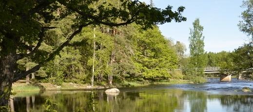 forest and water in the Nordic countries